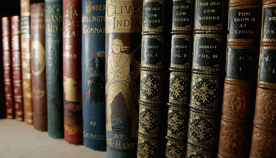 Famous Books to Understand India